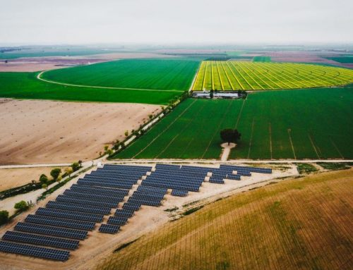 SUBVENCIONES PARA LA REALIZACIÓN DE ACTUACIONES DE EFICIENCIA ENERGÉTICA EN EXPLOTACIONES AGROPECUARIAS.