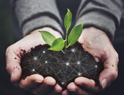 La DPH convoca los premios FELIX DE AZARA a las Empresas que desarrollen Proyectos de Formación, Educación y Sensibilización Medioambiental de Prevención de la Contaminación o Mejora del entorno